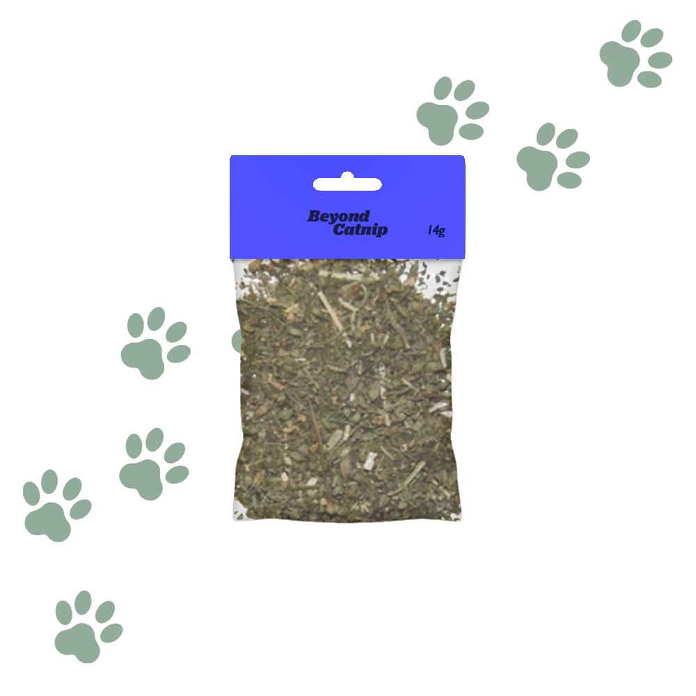 Catnip Leaves (14g)
