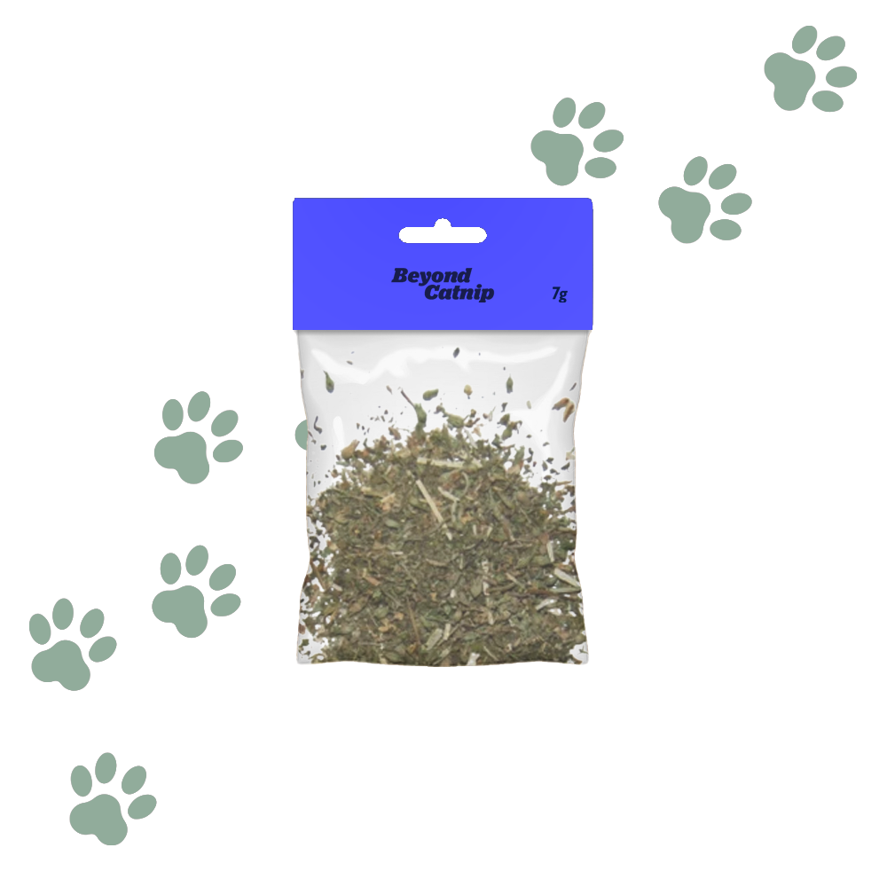 Catnip Leaves (7g)
